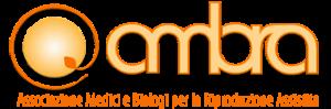 logo-ambra-webdef